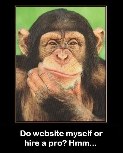 do-it-myself-website-vs-professional-site